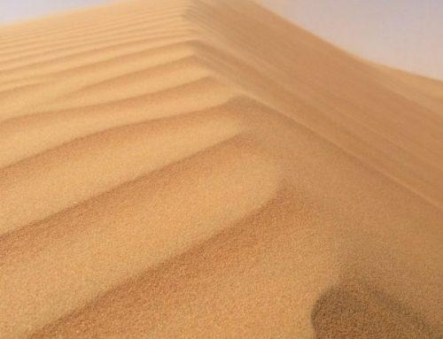 De Woestijn Zandveger
